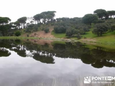Senderismo Madrid - Pantano de San Juan - Embalse de Picadas; navacerrada la barranca